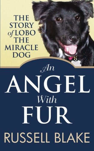 book cover of An Angel With Fur