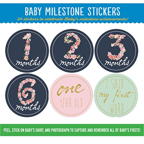 Price comparison product image DiDida Baby Monthly Milestone Sticker Floral Month Card For Girl-Medium 4 Inch-20 Pack