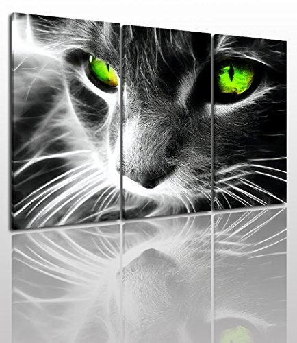 Gray Green Cat Canvas Wall Art Painting Modern Design Picture For