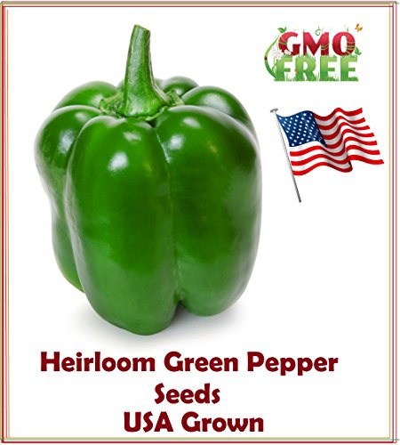 Green Pepper Seeds-Heirloom variety-Green Pepper Yolo Wonder Seeds, USA grown and Shipped from USA