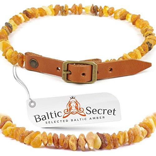 Premium Bernsteinkette für Hunde und Katzen mit verstellbarem Lederband / 100 % echter natürlicher baltischer Bernstein / Der natürliche Zeckenschutz für Ihren vierbeinigen Freund / Flohband / Ungezieferhalsband / Größen von 20cm bis 75cm /MLTorg55-60 Balt