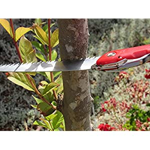 "TABOR TOOLS T6 Folding Saw with 8"" Straight Blade and Solid Grip Handle, Hand Saw for Pruning Trees, Trimming Branches, Camping, Clearing Forest Trails."