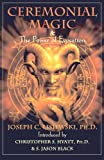 img - for Ceremonial Magic & The Power of Evocation book / textbook / text book