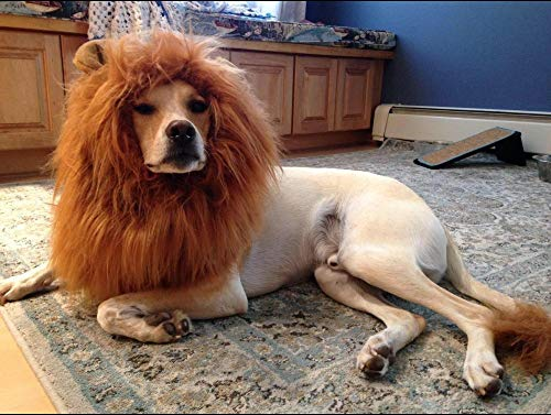 OMG Adorables Lion Mane Costume for Cat (Dog)]()