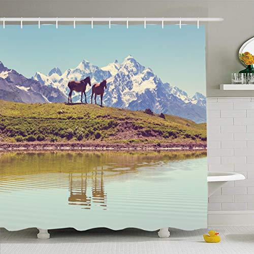 (Ahawoso Shower Curtain 60x72 Inches Filly Brown Horse Mountains Adventure Parks Lake Calf Care Caucasus Colt Cute Design Waterproof Polyester Fabric Bathroom Curtains Set with Hooks)