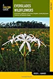 Everglades Wildflowers: A Field Guide to Wildflowers of the Historic Everglades, including Big Cypress, Corkscrew, and Fakahatchee Swamps (Wildflowers in the National Parks Series)