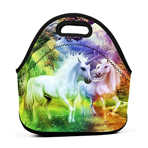Janeither Rainbow Unicorn Funny Pattern Portable Reusable Lunch Bag Waterproof Picnic Tote Insulated Cooler Zipper Box (Selena Clutch)