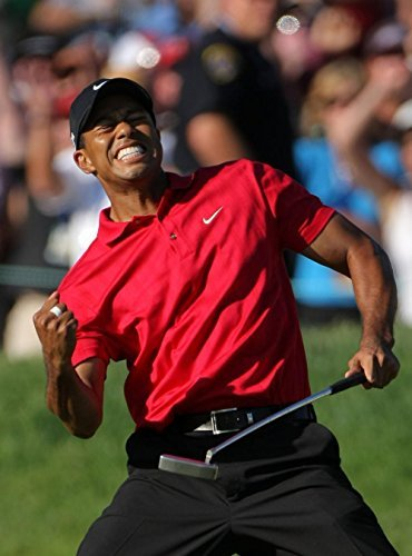 we are together Tiger Woods Getting Birdies Eldrick Tont Golf Sport Canvas poster wall scrolls for College Dorm F0214 24