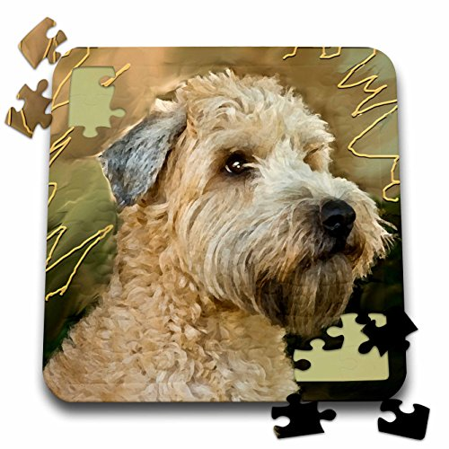 3dRose Dogs Soft Coated Wheaten Terrier - Soft Coated Wheaten Terrier Portrait - 10x10 Inch Puzzle (pzl_4808_2)