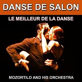 Danse de salon le meilleur de la danse les - Danse de salon le mans ...