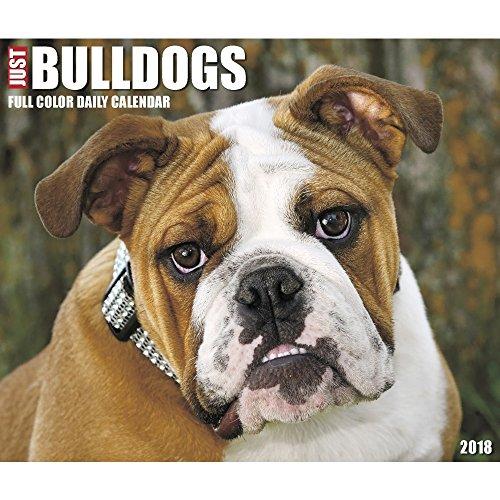 Just Bulldogs 2018 Box Calendar (Dog Breed Calendar)