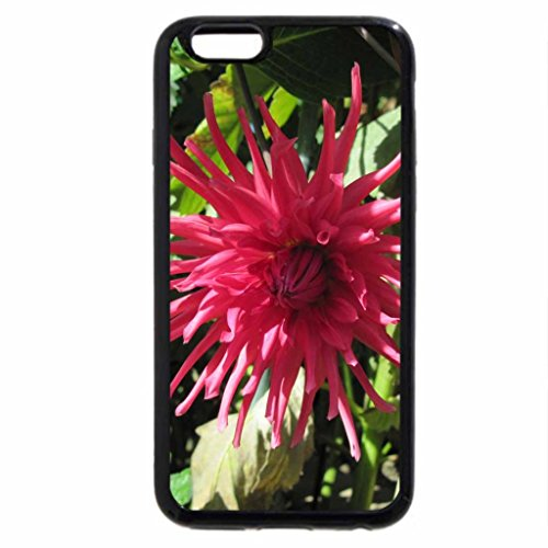 iPhone 6S / iPhone 6 Case (Black) A perfect day at Edmonton garden 43