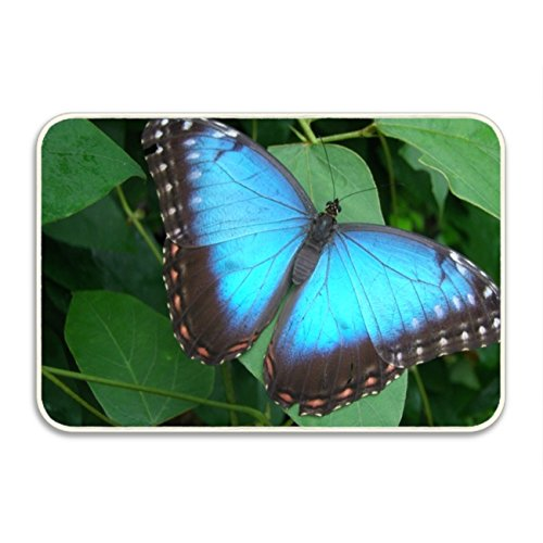 (Ranhkdn The Custom Non-slip Doormat Butterfly Release Prices Entrance Rug Floor Mat Door Mat Rug Indoor/Outdoor/Front Door/Bedroom Mats)