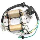#4: 2-Coil Magneto Stator for 50cc 70 cc 90 cc 110cc 125 cc ATVs Dirt Bikes Go Karts Dune Buggy Sandrail Pit Bike Quad 4 Wheelers Roketa SSR Coolster Taotao SunL
