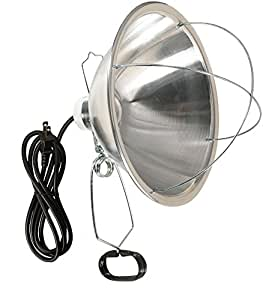 Woods Clamp Lamp with 10 Inch Reflector And Bulb Guard (300 Watt Bulb, 6 Foot Cord)