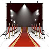 8x8FT Red Carpet Backdrop Photography Props Wedding Photo Backdrop Hollywood Photography Backgrounds Lighting Computer Printed Photo Backgrounds M1770
