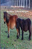 The Welsh Pony, Olive Tilford Olive Tilford Dargan, 1496119770