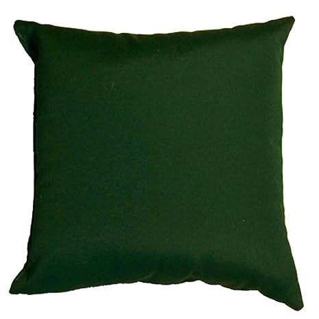 Ordinaire Sunbrella Throw Pillow Green