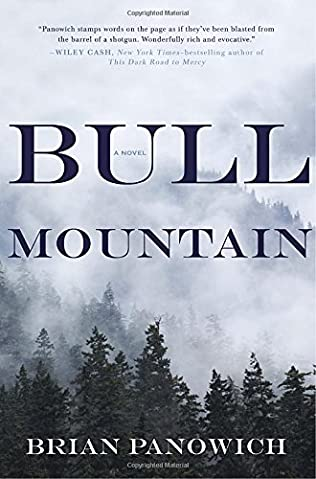 book cover of Bull Mountain