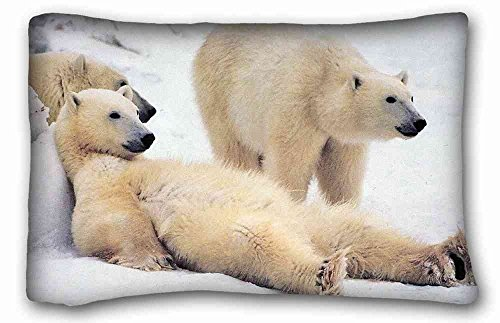 - TSlook Throw Blankets Bear Polar Bears Family Snow Fleece Blanket for Couch/Sofa/Bed 60x80