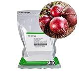 Bulls Blood Beet Seeds - 1 Lb - Non-GMO, Heirloom - Vegetable Garden, Microgreens Seeds