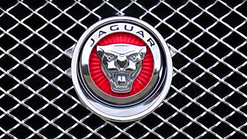 Gifts Delight Laminated 42x24 inches Poster: Jaguar Logo Emblem Car Design Icon Silver Auto Brand Symbol
