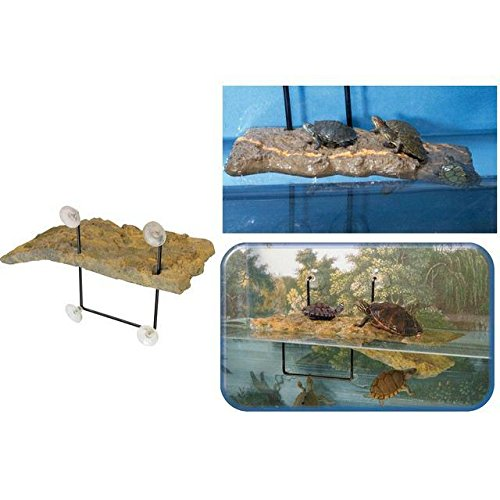 (Zoo Med Turtle Dock)