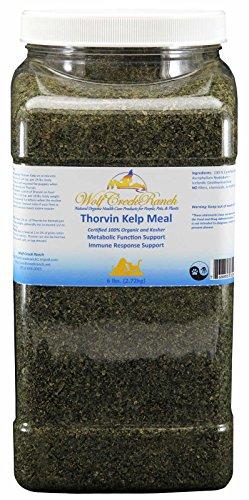 - Wolf Creek Ranch Icelandic Kelp Meal, 6lbs Jar