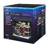 Coralife Fish Tank LED BioCube Aquarium Starter Kits, Size 32