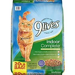 9Lives Dry Cat Food Review