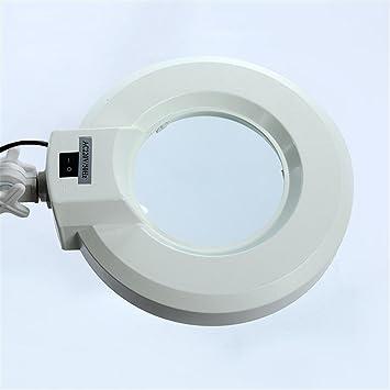 Lupa de pie con 5 luces LED con 5 ruedas de altura ajustable para lectura de joyería de belleza (22W): Amazon.es: Salud y cuidado personal