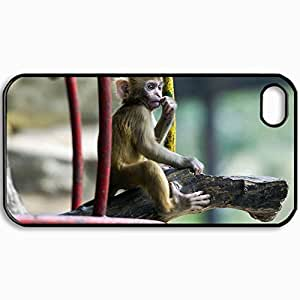 Personalized Protective Hardshell Back Hardcover For iPhone 4/4S, Design Monkey Marmoset Branch Design In Black Case Color