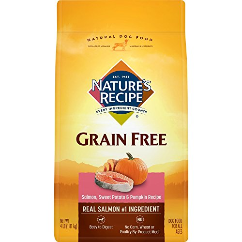 (Nature's Recipe Grain Free Easy to Digest Dry Dog Food, Salmon, Sweet Potato & Pumpkin Recipe,)