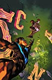 Nightwing Vol. 6: The Untouchable (Nightwing - the Untouchable)