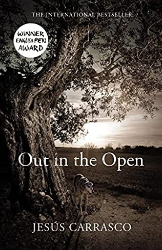 book cover of Out in the Open