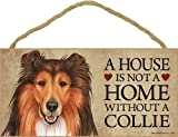 A house is not a home without Collie Dog - 5
