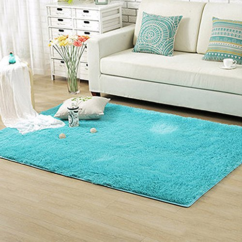 DODOING 3-5 Days Delivery Blue Super Soft Indoor Modern Shag Area Silky Smooth Rugs Fluffy Rugs Anti-Skid Shaggy Area Rug Dining Room Home Bedroom Carpet Floor Mat,80cmx120cm(31.5x47.2 inch)