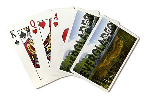 Everglades National Park - Alligator Underwater - Photography (Playing Card Deck - 52 Card Poker Size with Jokers)