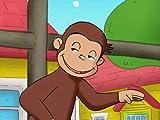 Monkey Underground/Cat Mother