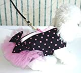 Harness Pink and black Polka Dots