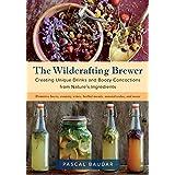 Beer Pairing (English Edition)