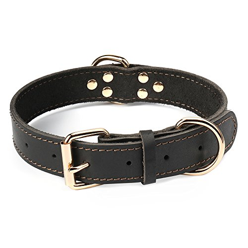 DAIHAQIKO Leather Dog Collar Genuine Leather Alloy Hardware Double D-Ring 3 Best for Medium Large and Extra Large Dogs (M: 1.2
