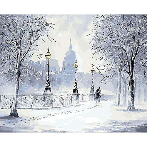 Paint by Numbers Seasons Snow Winter Autumn and Spring Photo Home Decor Painting Pictures by Numbers Handwork Draw On Canvas Living Room Wall Art (How To Draw Snow With Oil Paints)