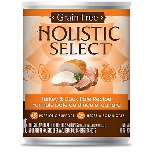 Holistic Select Grain Free Turkey Can Dog Food, Large