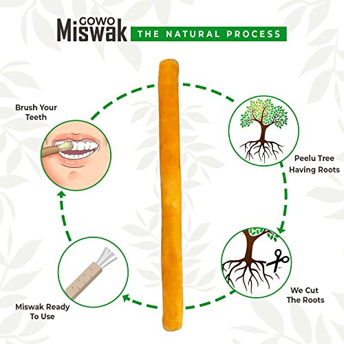 Original GOWO Miswak Sticks (3 Pack) 100% Natural Teeth Whitening Kit Natural Toothbrush Chemical Free Teeth Whitener and Breath Freshener Best Travel Gift For Hajj Umrah No Toothpaste Needed by GOWO (Image #2)