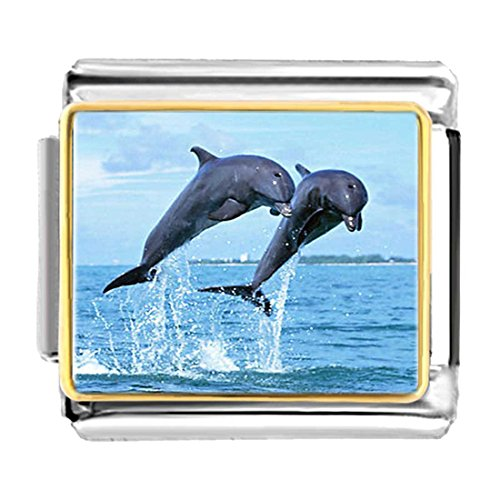 - GiftJewelryShop Gold Plated Two Cute Jump Dolphin Bracelet Link Photo Italian Charms