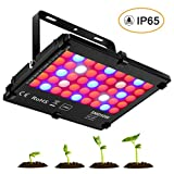Cheap HIGROW 50W Full Spectrum LED Grow Light Panel with Double Chips/ Reflector and Switch for Indoor Plants Seeding Growing and Flowering (Waterproof IP65)
