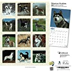 """Goldistock 2020 Large Wall Calendar -""""Siberian Huskies"""" - 12"""" x 24"""" (Open) - Thick & Sturdy Paper - - Fun-Loving and Outgoing Dogs 9"""