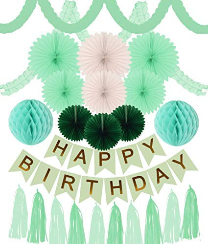 Meant2ToBe Green Birthday Decoration- Green and Gold Happy Birthday Banner - Dinosaur Garland - Green and Gold Party Decoration- Mint Green Party Kit - Birthday Party Decor for Adults and Kids