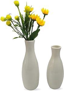 2 Piece Little White Vase Set, Couple Flower Bud Vases, Mini Bouquet Holder, Unique Small Decorative Ceramic Vases, Ornament Gadgets in Home and Office (Set A)